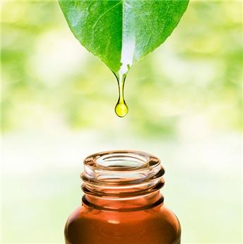 Qu'est-ce que l'aromathérapie? Notre définition