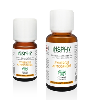 SYNERGIE ATMOSPHERE